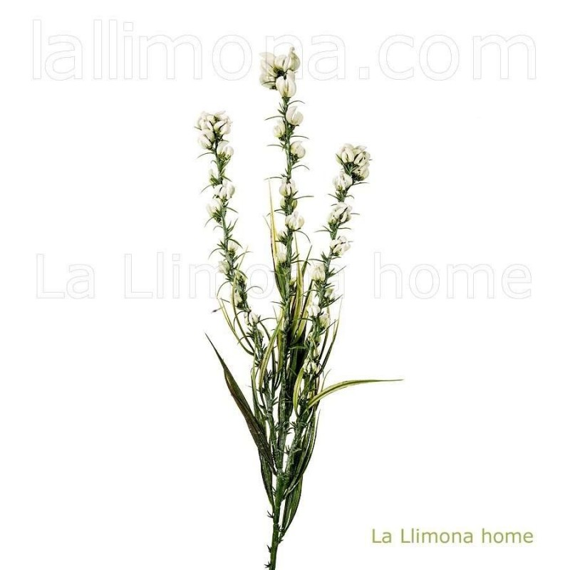 Rama artificial relleno wooly amsonia 70