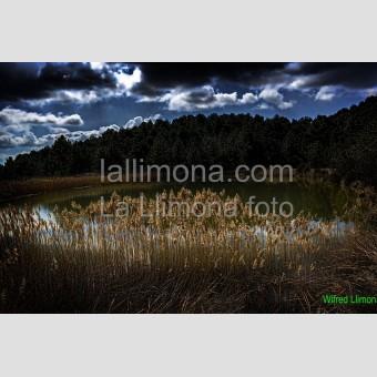 Lago F00320 Wifred Llimona · Fotos artísticas paisajes naturales