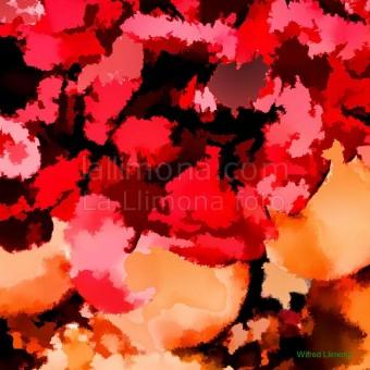 Figuras colores F00120 Wifred Llimona · Fotos artísticas colores