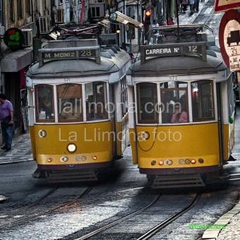 Tranvías Lisboa F00387-2 Wifred Llimona · Fotos artísticas vehículos
