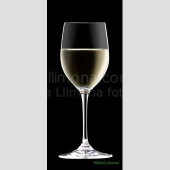Copa con vino blanco F00080-2 Wifred Llimona · Fotos artísticas detalles