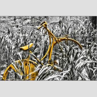 Bicicleta naranja F00493 Wifred Llimona · Fotos artísticas detalles