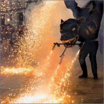 Baile de fuego drac vilafranca F00627 · Wifred Llimona · Fotografías artísticas estilo de vida