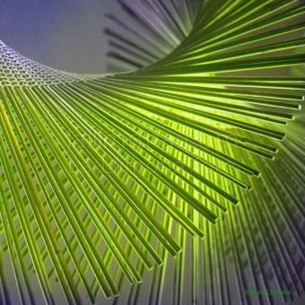 Textura espiral verde F00160-2 Wifred Llimona · Fotos artísticas detalles