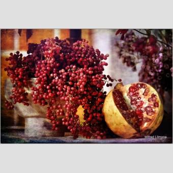 Bodegón frutos rojos F00728 · Autor: Wifred Llimona · Fotografías artísticas detalles · La Llimona foto