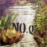 Cactus y crasas F00793-2 · Autor: Wifred Llimona · Fotografías artísticas flora · La Llimona foto