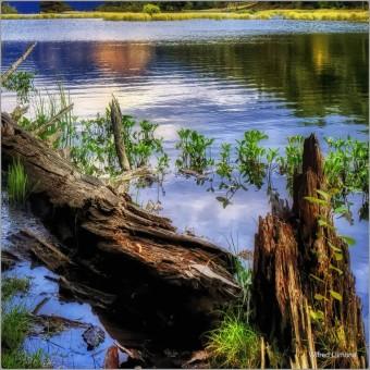 Embalse F00821 Wifred Llimona · Fotografías artísticas de paisajes naturales · La Llimona foto