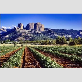 Fotografía rocas de Benet F00830 Wifred Llimona · Fotografías artísticas paisajes naturales · La Llimona foto