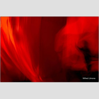 Fotografía sombra en rojos F00843 Wifred Llimona · Fotografías artísticas colores · La Llimona foto