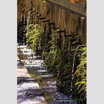 Fonts Les Dous F00184-2 Wifred Llimona · Fotos artísticas espacios