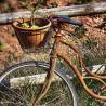 Bicicleta con cesta F00188 Wifred Llimona · Fotos artísticas vehículos