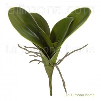 Rama hojas orquídeas artificiales 26 · Plantas artificiales · La Llimona home