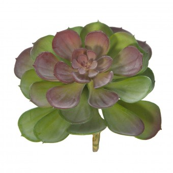 Planta crasa artificial mini echeveria bicolor 16