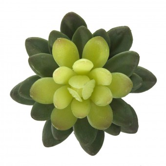 Planta crasa artificial mini echeveria pulidonis verde · Crasas y cactus artificiales 2