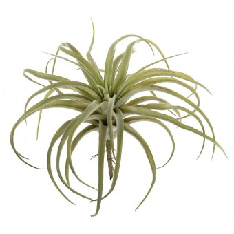 Planta tillandsia artificial verde 27 · Crasas y cactus artificiales