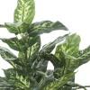 Plantas artificiales. Planta dieffenbachia artificial · Plantas artificiales 2