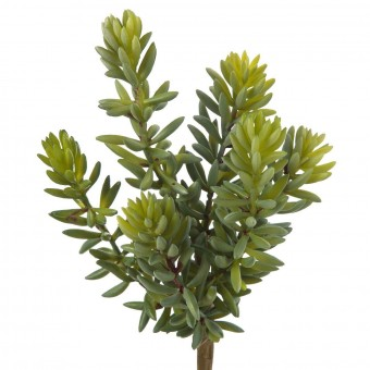 Planta crasa artificial sedum verde 20