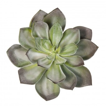 Planta crasa artificial echeveria green prince · Crasas y cactus artificiales 2