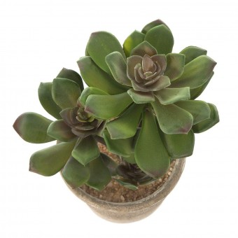 Planta crasa artificial echeveria tres troncos verde · Crasas y cactus artificiales 2