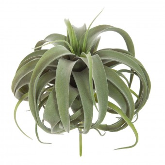 Planta tillandsia artificial hoja ancha verde 23 · Crasas y cactus artificiales · La Llimona home