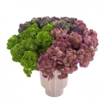 Rama crasa sedum artificial rosa · Crasas y cactus artificiales 3