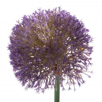 Flor allium artificial lavanda 63 · Flores artificiales 2