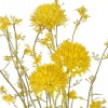 Flores artificiales. Rama allium artificial amarillo silvestre · Flores artificiales 2