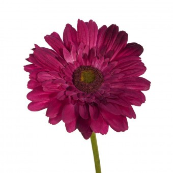 Flor gerbera artificial cereza 60 · Flores artificiales