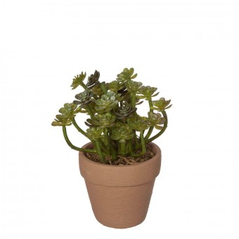 Planta crasa artificial echeveria verde con maceta · Plantas artificiales