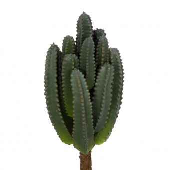 Planta crasa artificial echinopsis pachanoi verde bicolor - Plantas artificiales