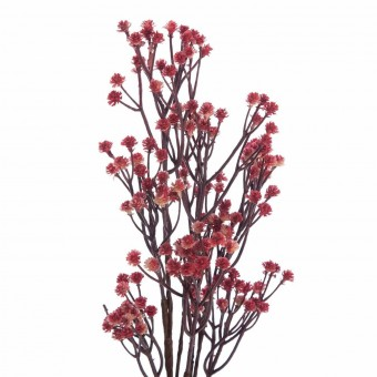 Rama gypsophila artificial roja · Plantas artificiales 3 · La Llimona home