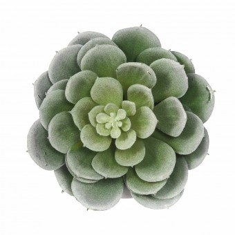Planta echeveria artificial con maceta · Crasas y cactus artificiales 4