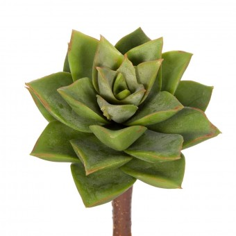 Mini echeveria artificial verde 12 - Crasas y cactus artificiales
