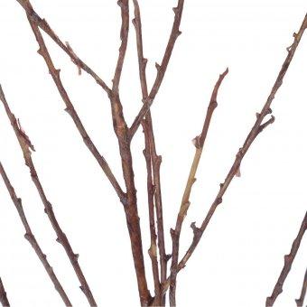 Rama raíces artificial relleno - Flores artificiales - Hojas y ramas artificiales