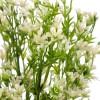 Bush mini flores artificiales blancas 35 - Flores artificiales - Flor artificial diversa 2
