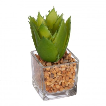 Cactus aloe artificial maceta cristal - Planta artificial - Crasas y cactus artificiales