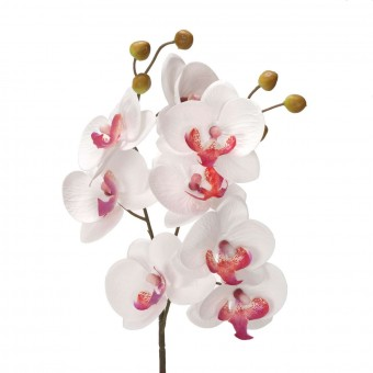 Orquídea artificial bicolor 53 - Orquídeas artificiales