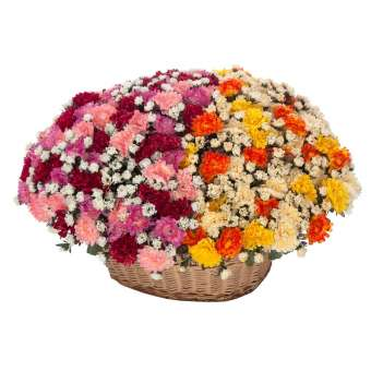 Ramo mums artificiales naranja 36 · Ramos flores artificiales · La Llimona home