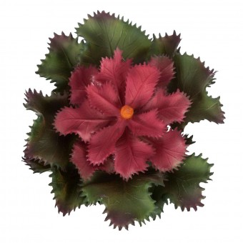 Echeveria Gibbiflora artificial bicolor 10 · Plantas artificiales · Crasas y cactus artificiales · La Llimona 2