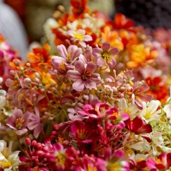 Daphne artificial malva 70 · Flores artificiales · La Llimona home