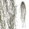 Tillandsia colgante artificial verde gris 70 · Plantas colgantes artificiales · La Llimona home