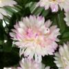 Ramo muns artificiales bicolor 45 · Flor artificial · Funerario · Ramos flores artificiales cementerio