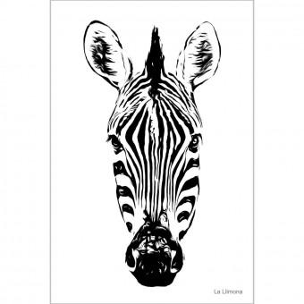 Cebra F00015 · Láminas decorativas · La Llimona