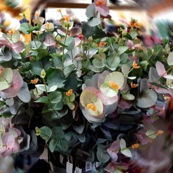 Eucalipto artificial verde 83 · Planta artificiales · Hojas y ramas artificiales · La Llimona Home