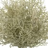 Plantas artificiales. Planta bush artificial grass beige 30 · Plantas artificiales 2
