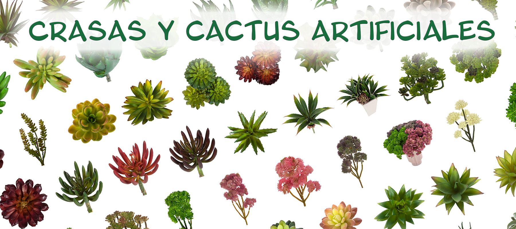 Crasas y cactus artificiales - La Llimona home